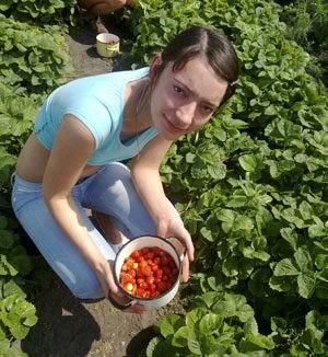 Сбор ягод в июле