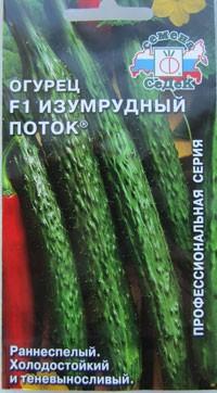Семена огурцов Изумрудный поток