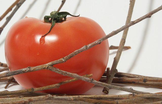 Выращивание крупных томатов