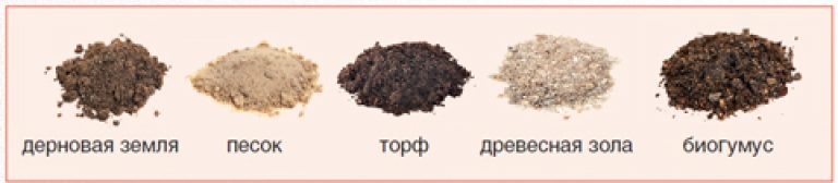 103Состав грунта для клубники