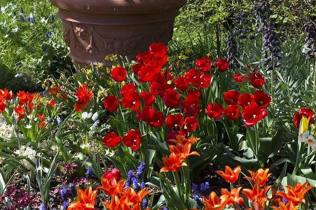 Весенний цветник