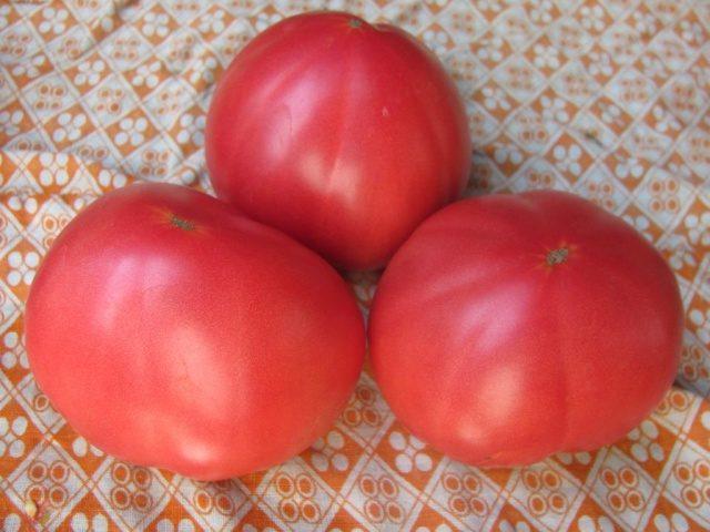 Крупные томаты бабушкин секрет