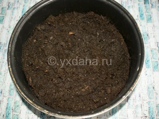 Увлажненная почва