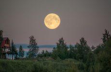 Посевной лунный календарь на 2019 год для Урала