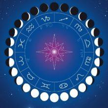 Лунный посевной календарь для садоводов на 2017 год