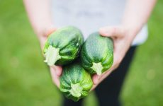 Как вырастить цукини на компостной грядке