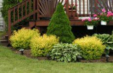 Сад по фэн-шуй: природа для вашего блага