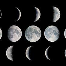 Лунный посевной календарь для садоводов на 2018 год