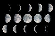 Лунный календарь садовода-огородника на 2018 год