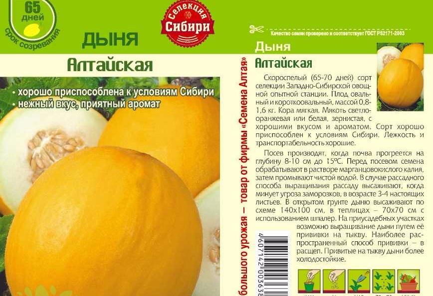Семена дынь Алтайская