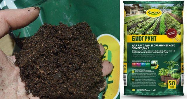 Биогрунт для рассады