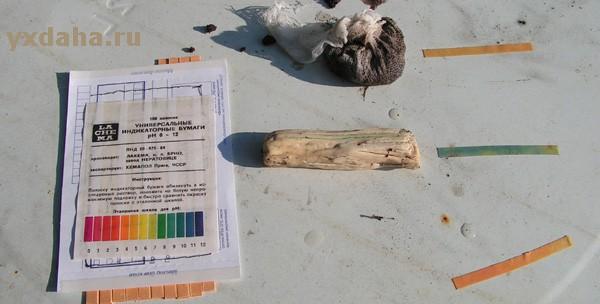 Определить кислотность почвы