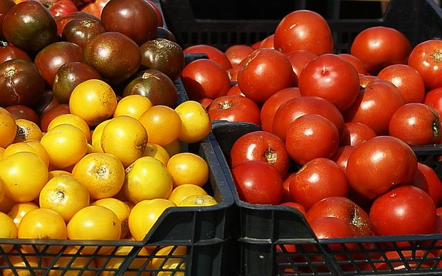 Выбор сортов томатов