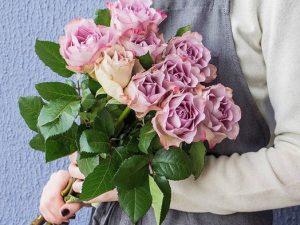 Розы Мемори Лэн
