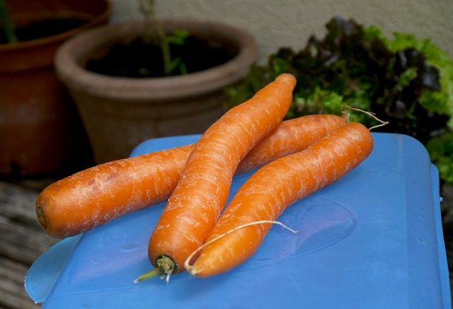 Вкусная морковь
