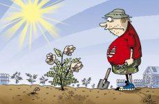"""Как избавиться от хрена в огороде или """"Хреновые"""" войны"""