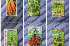 6 растений для выращивания на балконе