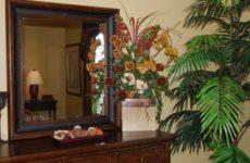 Зачем нужны комнатные растения