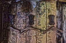 Черная плесень и сухая гниль – опасность деревянным домам