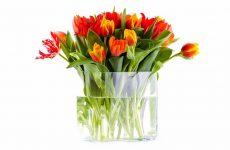 Как сохранить жизнь букета из живых цветов